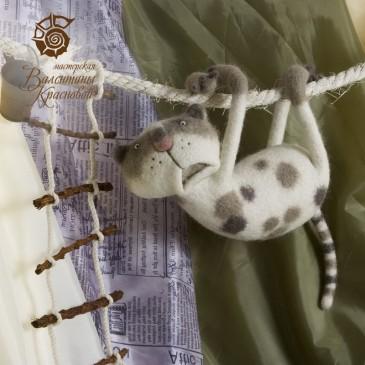 кот Мазаччо