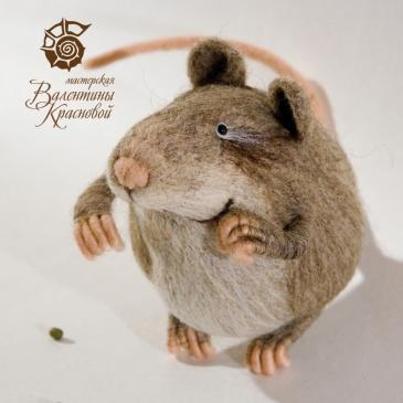 Крысь