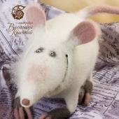 Крыса Шарлотта